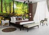 Forest Photo Wall Mural 10513P8_