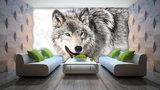 Animals Photo Wall Mural 2940P8_
