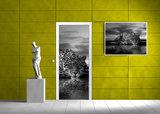 Creeping Jaguar in Black and White Door Mural Photo Wallpaper 218VET_