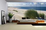 Landscape & Nature Photo Wall Mural 655P8_