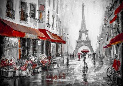 Paris Photo Wall Mural 13357P8