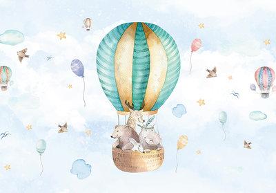 Air Balloons Travel Photo Wall Mural 13510P8