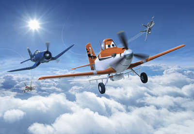 Planes Above the Clouds 8-465