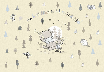 Winnie Pooh Best Bear 8-4024