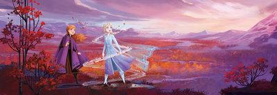 Frozen Panorama 8-4104