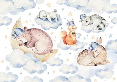 Sweet Dreams Animals Photo Wall Mural 13671P8