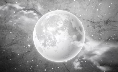 Moon Photo Wall Mural 13574P8