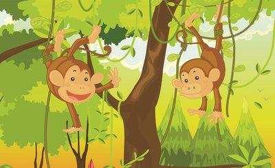 Monkeys Photo Wallpaper Mural 1271P8