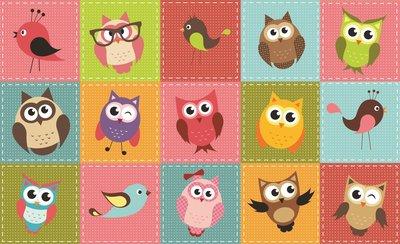 Owls Photo Wallpaper Mural 1035P8