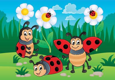 Photo Wall Mural Ladybug 11410P8