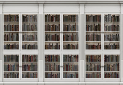 Bookcase Photo Wall Mural 3689P8