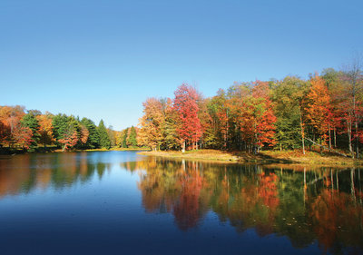 Lake Photo Wall Mural 12113P8