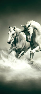 Unicorns Galloping on Water Door Mural Photo Wallpaper 430VET