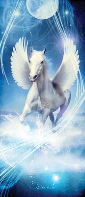 Pegasus on Blue Background Door Mural Photo Wallpaper 588VET