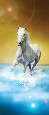 White Horses Galloping on Water Door Mural Photo Wallpaper 425VET