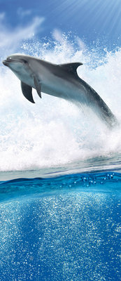 Dolphins Jumping on Waves Door Mural Photo Wallpaper 188VET