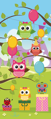 Owl Boys Girls Childrens Door Mural Photo Wallpaper 1375VET
