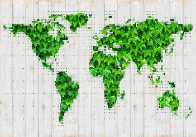 World Map Groen Photo Wall Mural 12594P8
