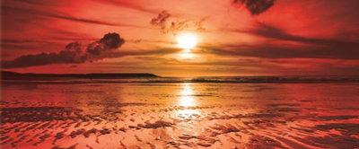 Sea Beach Sand Landscape Panoramic Photo Wall Mural 262VEP