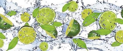 Fresh Limes Panoramic Photo Wall Mural 288VEP