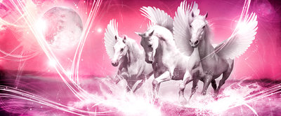 Pegasus on Pink Background Panoramic Photo Wall Mural 589VEP