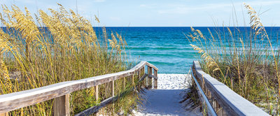 Beach Entrance Path Panoramic Photo Wall Mural 3462VEP