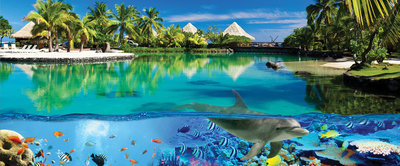 Coral Reef and Maldives Panoramic Photo Wall Mural 3356VEP