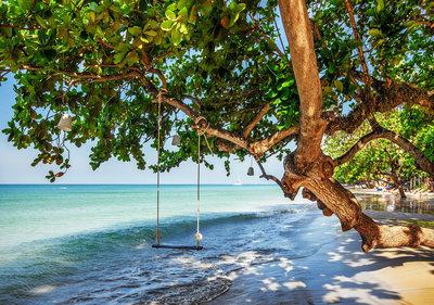 Beach Tropical Photo Wall Mural 11850P8