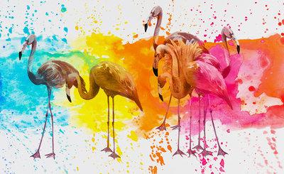 Flamingo Fotobehang 12273P8