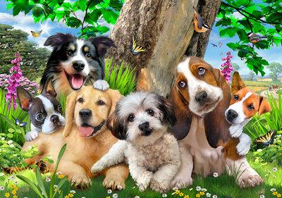 Honden Selfie Fotobehang 12877P8