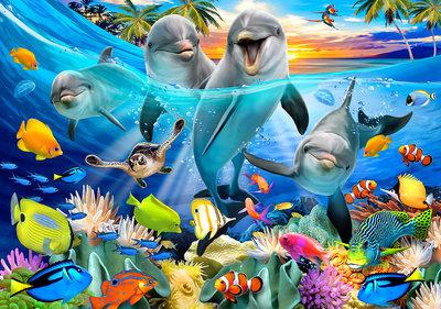 Dolfijnen Selfie Fotobehang 12851P8