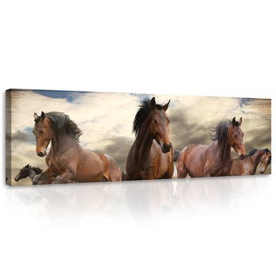 Galloping Horses on Wooden Planks Canvas Schilderij PP10083O3