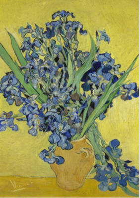 BN Wallcoverings Van Gogh / No Limits 30545 Irissen