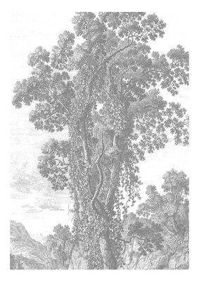 KEK Amsterdam Engraved Landscape II WP.313