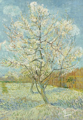 BN Wallcoverings Van Gogh / No Limits 30541 De Roze