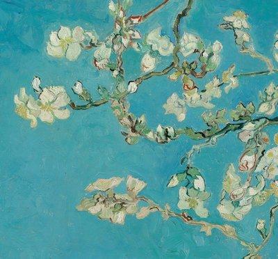 BN Van Gogh Museum 200331 (FREE Glue Included!)