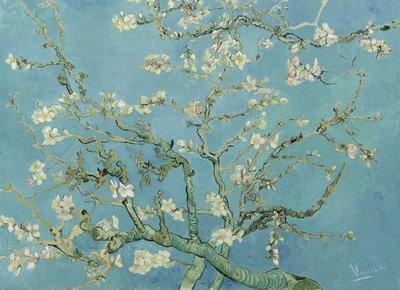 BN Van Gogh Museum 200330 (FREE Glue Included!)