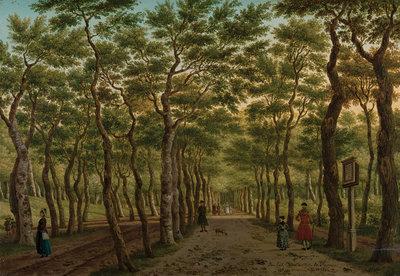 Rijksmuseum Het Herepad Haagse Bos RM44 (FREE Glue Included!)