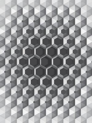 3D Hexagons Photo Wall Mural 10760VEA
