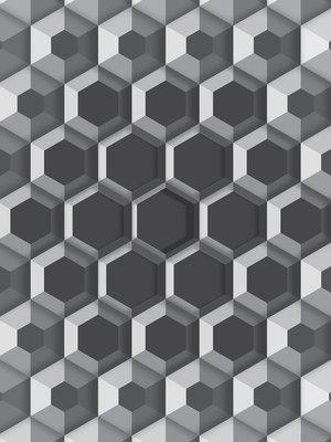 3D Hexagons Photo Wall Mural 10761VEA
