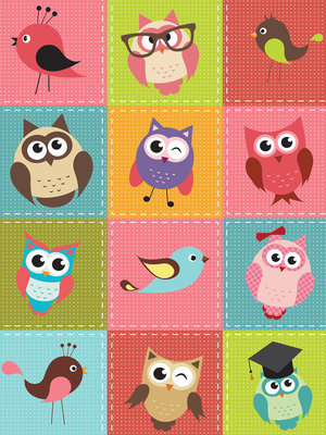 Birds and Owls Patchwork Photo Wall Mural 10376VEA