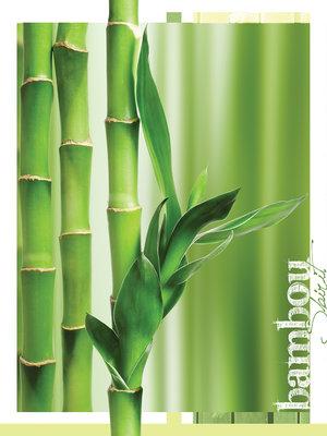 Bamboo Photo Wall Mural 20411VEA